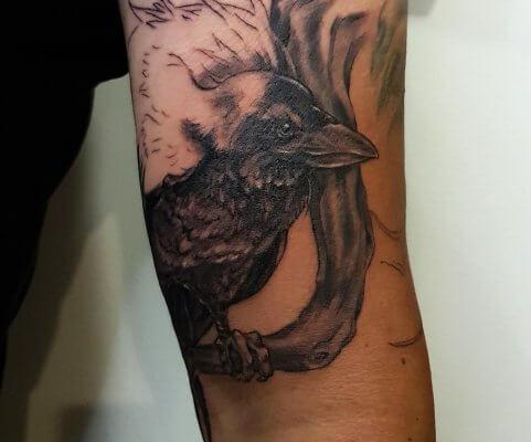 tatuaże ptaki